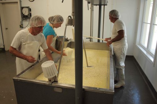 Making cheese at Fromagerie-du-presbytere