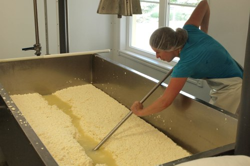 Marie-Chantal separates the curds and whey
